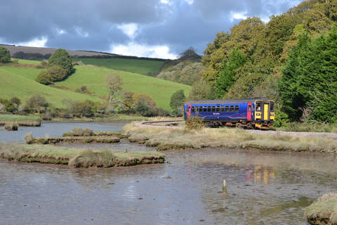 Train on the scenic Liskeard - Looe branch line